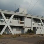 haruta1.
